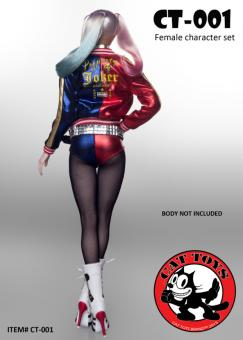 Harley Quinn Head and Outfit Set