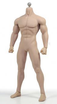 Phicen Body Male 1/6