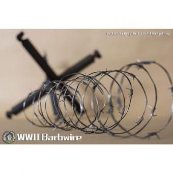 Barbed Wire Stacheldraht 1/6