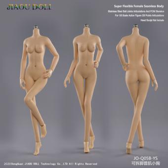 Caucasian Pale Female Super Flexible Seamless Body (Small Bust) 1/6