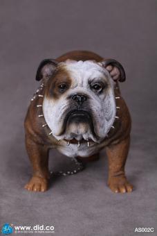 British Bulldog (Brown) 1/6