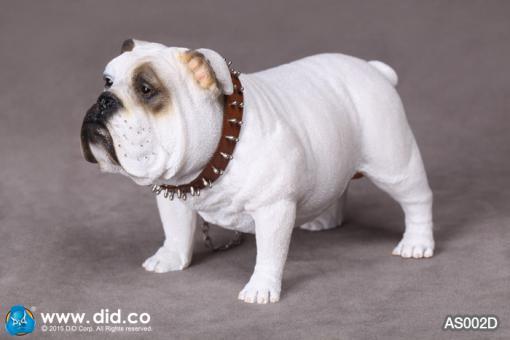 British Bulldog (White) 1/6