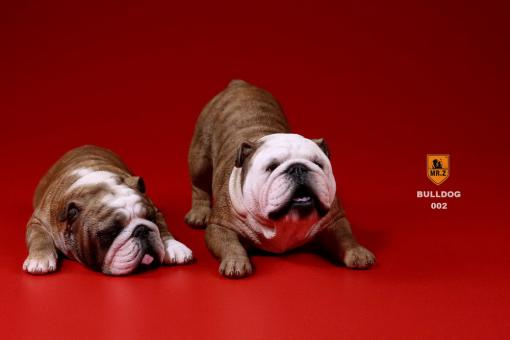 British Bulldog Dogs Set (Brown) 1/6