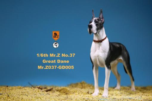 German Great Dane Dog (Black White) 1/6