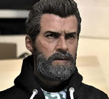 The Wolf Male Head BS 1/6