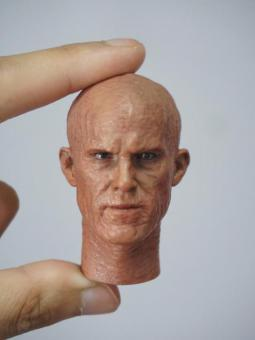 1/6 Scale Head Sculpt for Deadpool