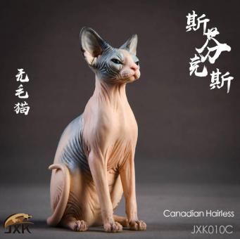 Sphynx Canadian Hairless Cat (Beige) 1/6