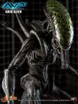 1:6 Hot Toys Grid Alien
